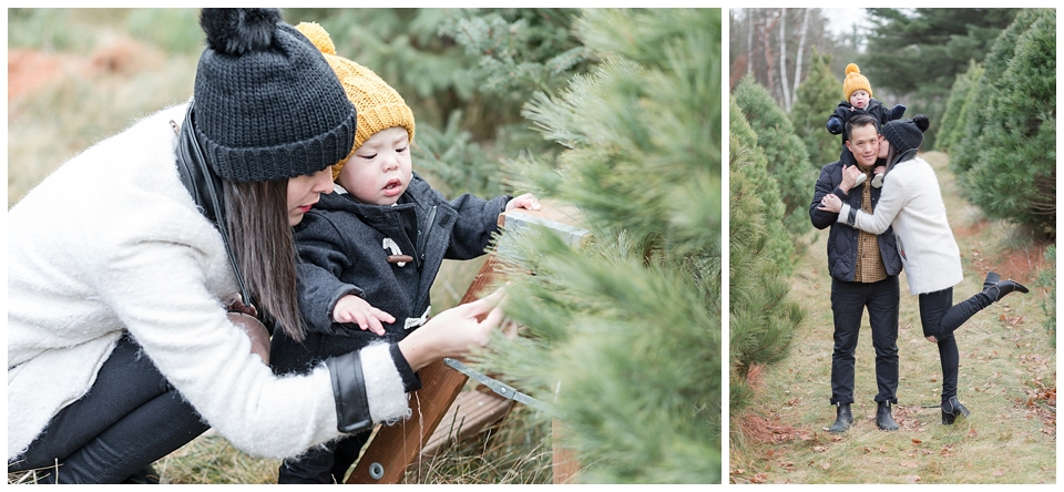 christmas tree farm family photos winter family photography horton tree farms